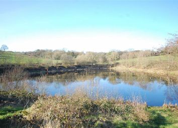 Thumbnail Farm for sale in Lindway Lane, Brackenfield, Alfreton