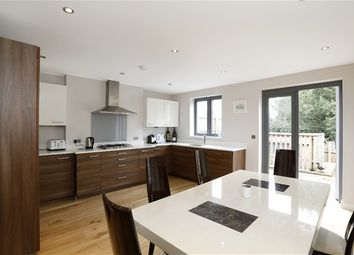 Thumbnail 4 bedroom property for sale in Hamlyn Gardens, London