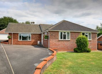 Thumbnail 4 bedroom detached bungalow for sale in Coach Ride, Marlow