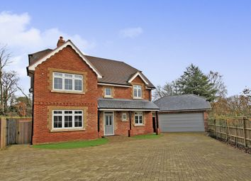 Thumbnail 5 bed detached house to rent in Lymington Bottom, Four Marks, Alton