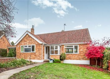 Thumbnail 1 bed bungalow to rent in Colneys Close, Sudbury