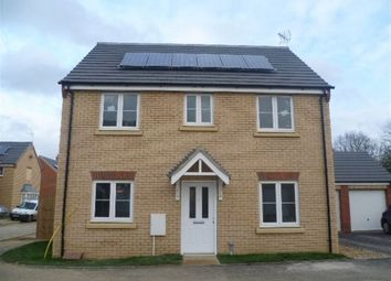 Thumbnail 4 bed property to rent in Millport Drive, Eye, Peterborough