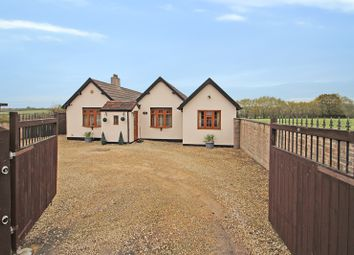 Thumbnail 4 bed detached bungalow for sale in Rodden Down, Rodden, Frome