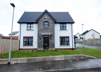 Thumbnail 3 bedroom detached house for sale in Coopers Mill Heights, Dundonald, Belfast