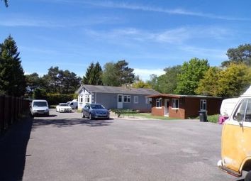 3 bed bungalow for sale in St. Leonards, Ringwood, Dorset BH24