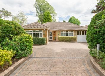 3 bed detached bungalow for sale in Oatlands Drive, Weybridge, Surrey KT13
