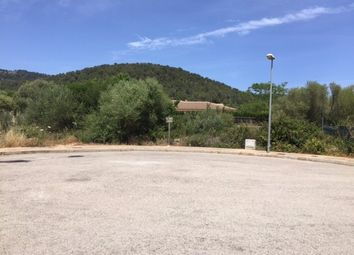 Thumbnail Land for sale in 07420, Sa Pobla, Spain