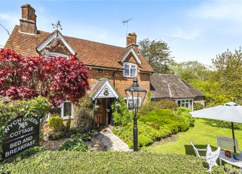 Wych Green, Bramshaw, Lyndhurst, Hampshire SO43, south east england property