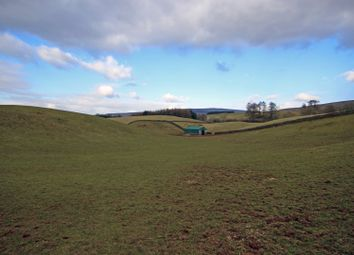 Thumbnail Land for sale in Land At Scalehouses, Renwick, Penrith