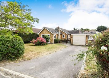 Thumbnail 3 bedroom detached bungalow for sale in Stores Lane, Tiptree, Colchester