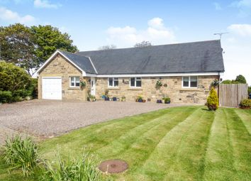 Thumbnail 6 bed bungalow for sale in The Croft, Longhoughton, Alnwick