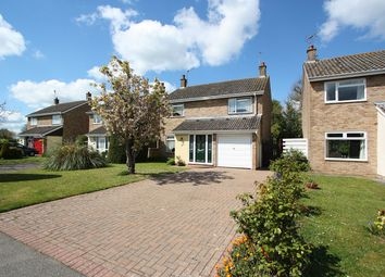 Thumbnail 4 bed detached house for sale in Morton Way, Halstead