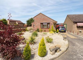 Thumbnail 2 bed bungalow for sale in Downham Market, Norfolk