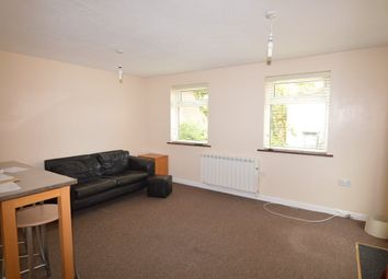 Thumbnail Studio to rent in Hall Road, Norwich