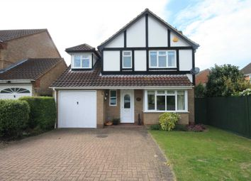 Thumbnail 4 bed detached house to rent in Sweet Briar Drive, Laindon, Basildon