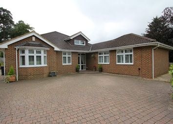 Thumbnail 5 bed detached bungalow for sale in Springfield Road, Camberley