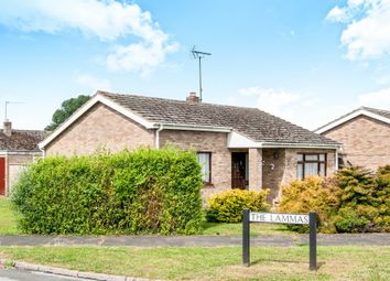 Thumbnail 2 bed detached bungalow for sale in West Hall Road, Mundford, Thetford