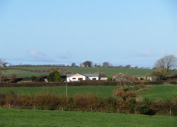 Thumbnail 3 bed detached bungalow for sale in Gidcott, Holsworthy