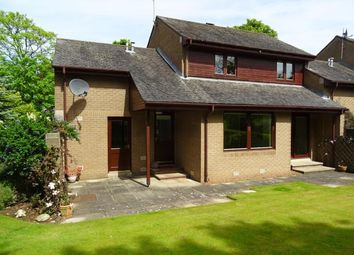 Thumbnail 4 bed semi-detached house to rent in Springfield Crescent, North Berwick