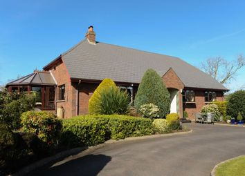 Thumbnail 4 bedroom detached house for sale in Hillhead Road, Dundonald, Belfast