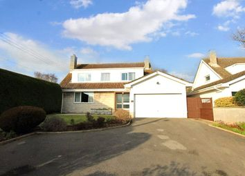 Thumbnail 4 bedroom detached house for sale in Tickenham, North Somerset