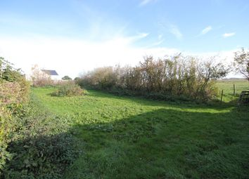 Thumbnail Land for sale in Old Bank, Prickwillow, Ely