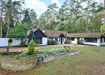 Thumbnail 4 bed detached bungalow to rent in Lower Wokingham Road, Crowthorne, Berkshire