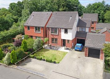 Thumbnail 4 bed detached house for sale in Delrogue Road, Crawley