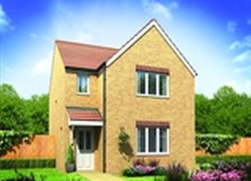 Thumbnail 3 bedroom detached house for sale in The Hatfield At Moorfield, Moorfield Way, York