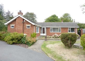 Thumbnail 3 bed detached bungalow for sale in Dove Cottage, Church Lane, Church End, Ulceby, Ulceby