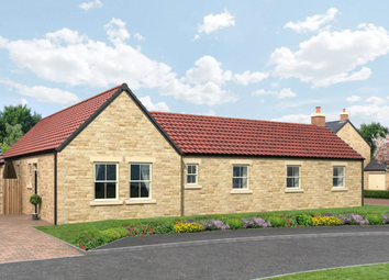 Thumbnail 3 bedroom bungalow for sale in Swarland, Northumberland