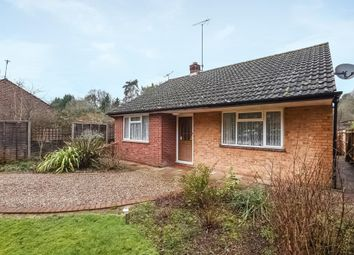 Thumbnail 2 bed detached bungalow to rent in Nine Mile Ride, Finchampstead