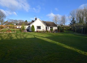 Thumbnail 4 bed detached bungalow for sale in Lower Quay Road, Hook, Haverfordwest
