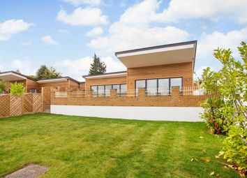 Thumbnail 4 bed bungalow to rent in Marlow Road, Marlow