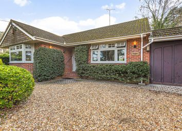 Thumbnail 2 bed detached bungalow to rent in Heath Ride, Finchampstead