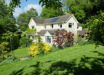 Thumbnail 4 bed detached house for sale in Woolpits Lane, Parkway, Ledbury