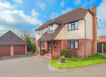 Thumbnail 4 bed detached house to rent in Chapel Lane, West Bergholt, Colchester