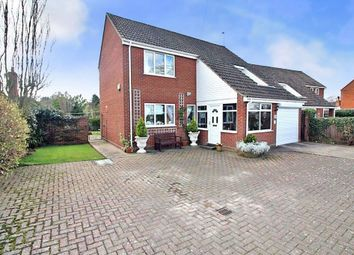 Thumbnail 3 bedroom detached house for sale in Norwich Road, Horning, Norwich