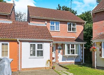 Thumbnail 4 bed property to rent in Juniper Close, Worthing