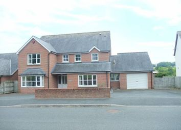 Thumbnail 5 bed detached house for sale in Glanarberth, Llechryd, Cardigan