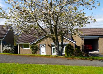 Thumbnail 3 bed detached house for sale in Bishopton Way, Hexham