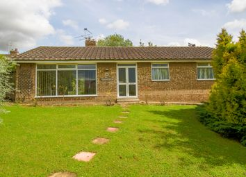 Thumbnail 3 bedroom bungalow for sale in Lawshall Road, Hartest, Near Bury St. Edmunds