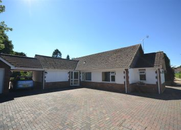 Thumbnail 5 bed detached bungalow for sale in Wroxham, Norwich