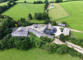 Thumbnail Farm for sale in Golberdon, Callington, Cornwall