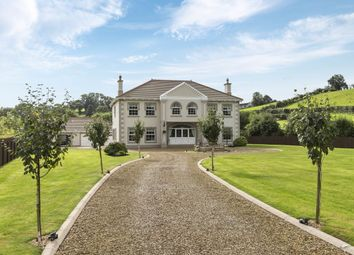 Thumbnail Detached house for sale in Lakeland Road, Annahilt, Hillsborough