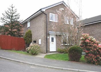 Thumbnail 3 bed detached house for sale in Whernside Way, Leyland