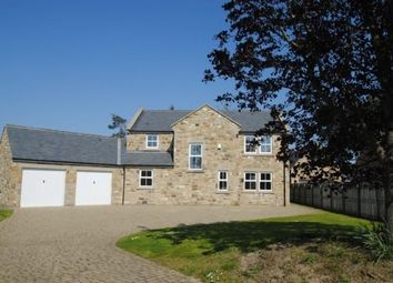 Thumbnail Detached house to rent in Felton, Morpeth
