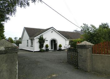 Thumbnail 4 bed detached bungalow for sale in Blaenannerch, Cardigan