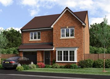 "Thumbnail 4 bedroom detached house for sale in ""Chadwick"" at Blackburn"