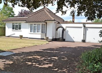Thumbnail 4 bed bungalow to rent in West Farm Close, Ashtead